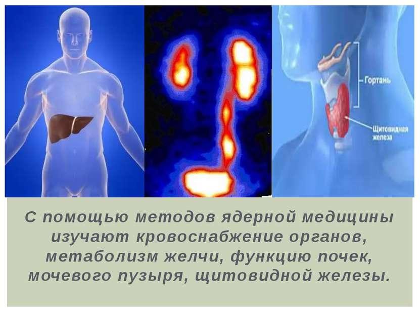 С помощью методов ядерной медицины изучают кровоснабжение органов, метаболизм...
