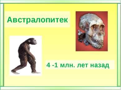 Австралопитек 4 -1 млн. лет назад