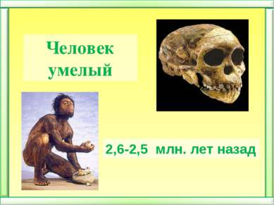 Человек умелый 2,6-2,5 млн. лет назад