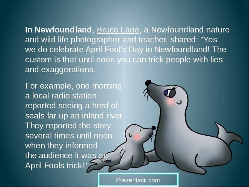 In Newfoundland, Bruce Lane, a Newfoundland nature and wild life photographer...