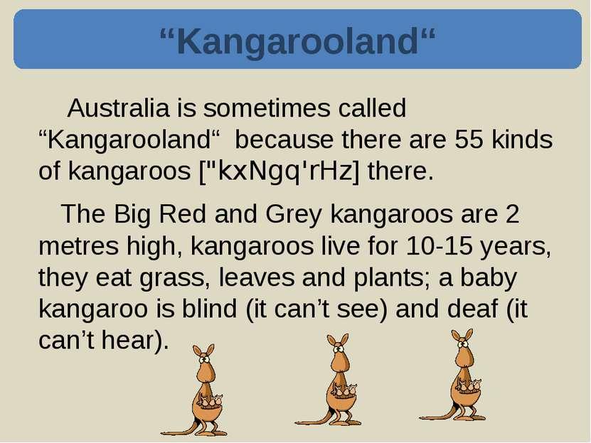 Kangaroos can jump 9 metres long. They can jump very fast – 30 kilometres an ...