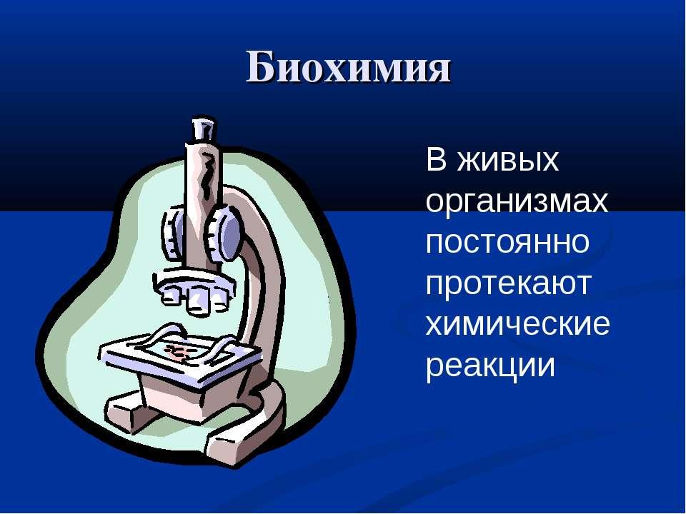 Биохимия В живых организмах постоянно протекают химические реакции