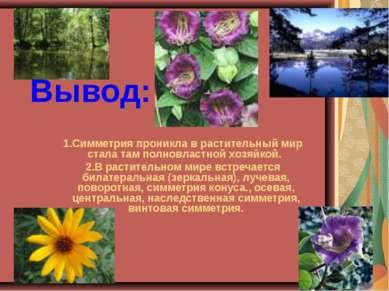 Вывод: Симметрия проникла в растительный мир стала там полновластной хозяйкой...