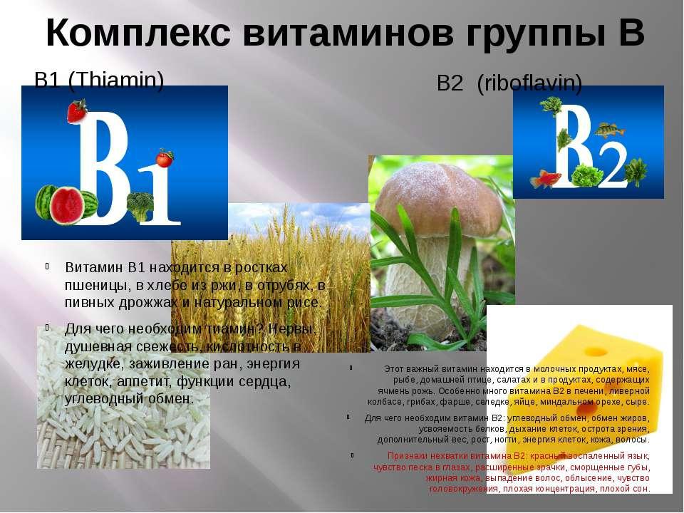 Комплекс витаминов группы В В1 (Thiamin) В2 (riboflavin) Витамин В1 находитс...