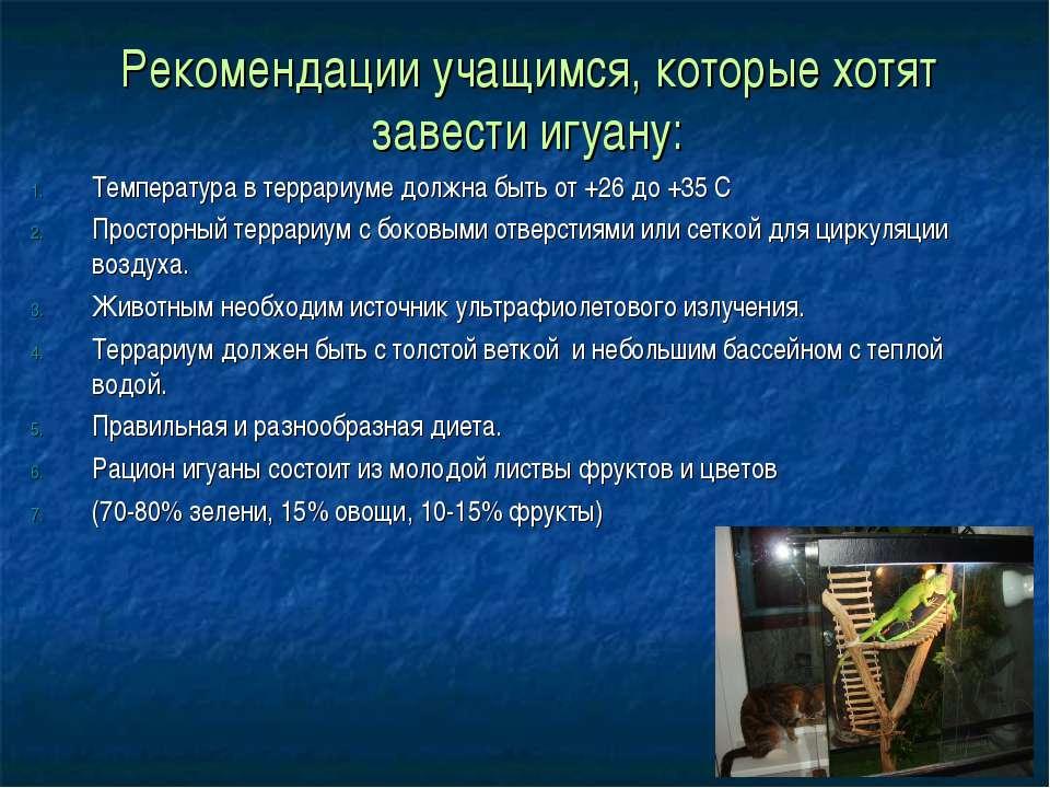 Рекомендации учащимся, которые хотят завести игуану: Температура в террариуме...