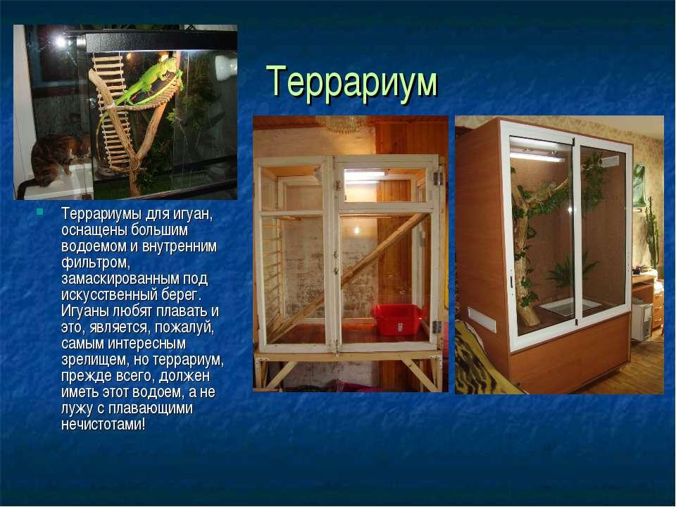 Террариум Террариумы для игуан, оснащены большим водоемом и внутренним фильтр...