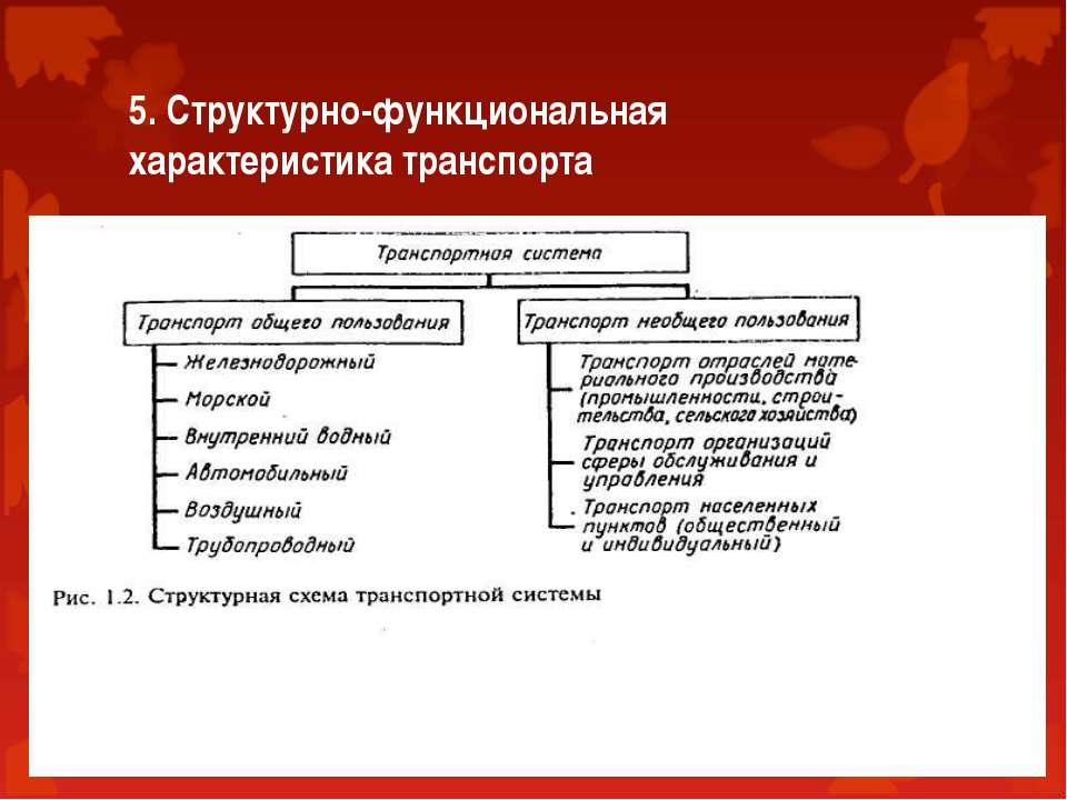 5. Структурно-функциональная характеристика транспорта