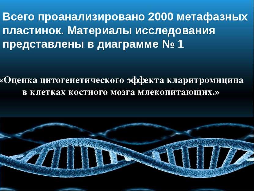 Всего проанализировано 2000 метафазных пластинок. Материалы исследования пред...