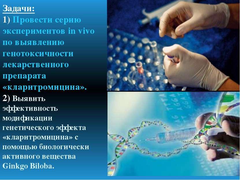 Задачи: 1) Провести серию экспериментов in vivo по выявлению генотоксичности ...