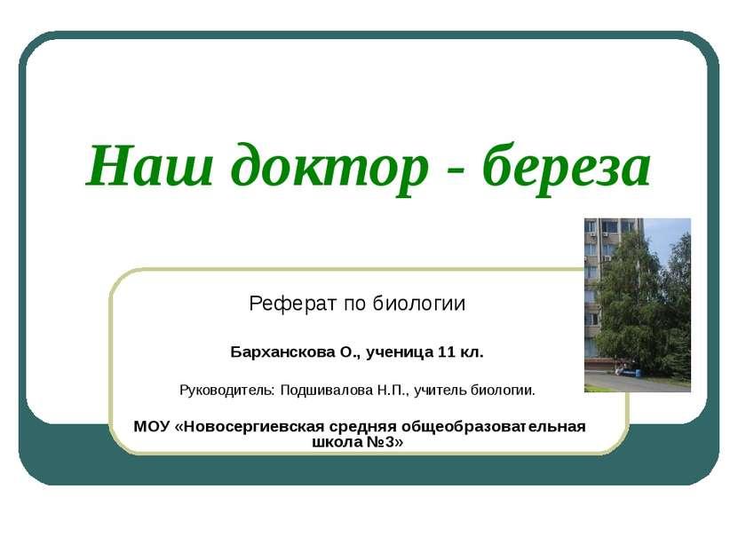 Наш доктор - береза Реферат по биологии Барханскова О., ученица 11 кл. Руково...