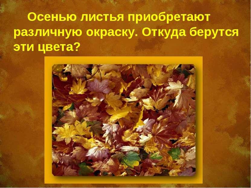 как окрашиваются листья деревьев осенью Виктория