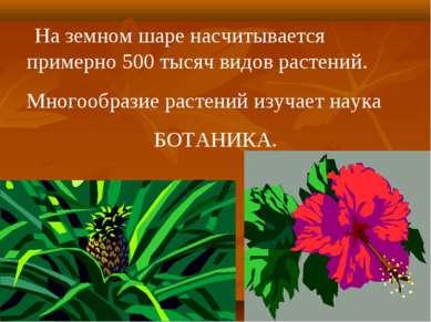 На земном шаре насчитывается примерно 500 тысяч видов растений. Многообразие ...