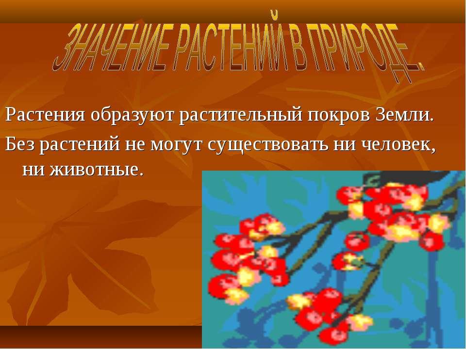 Растения образуют растительный покров Земли. Без растений не могут существова...