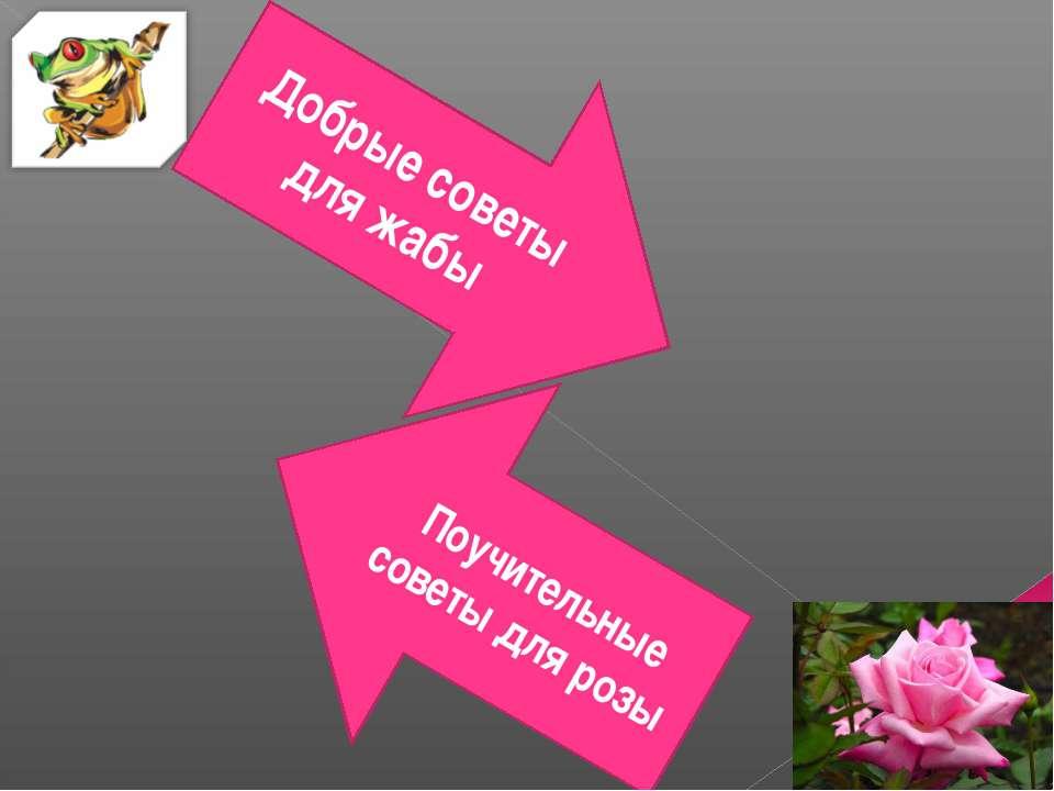 Добрые советы для жабы Поучительные советы для розы