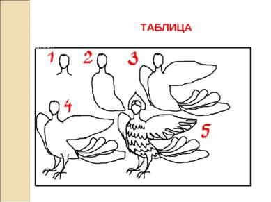 ТАБЛИЦА Один из вариантов поэтапного изображения птицы – девы.