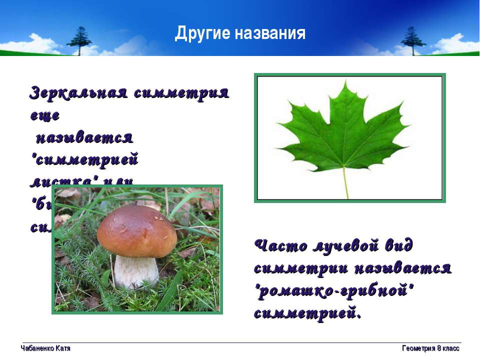 Чабаненко Катя Геометрия 8 класс Другие названия Зеркальная симметрия еще наз...