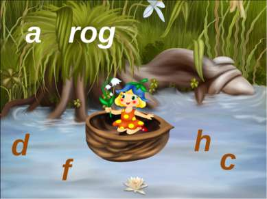 a frog d c h f