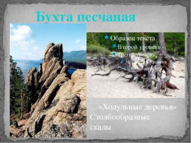 Бухта песчаная «Ходульные деревья» Столбообразные скалы