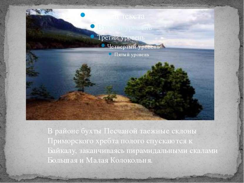 В районе бухты Песчаной таежные склоны Приморского хребта полого спускаются к...