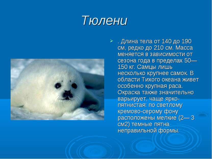 Тюлени . Длина тела от 140 до 190 см, редко до 210 см. Масса меняется в завис...