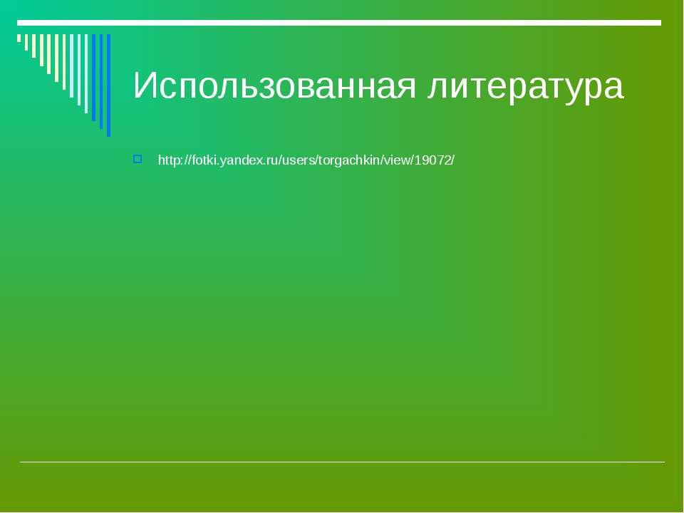Использованная литература http://fotki.yandex.ru/users/torgachkin/view/19072/