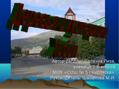 Автор работы: Саленик Лиза, ученица 2 Б класса МОУ «СОШ № 5 г.Кировска». Руко...