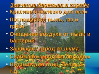 Значение деревьев в городе Красиво и полезно для всех Поглощается пыль, газ и...