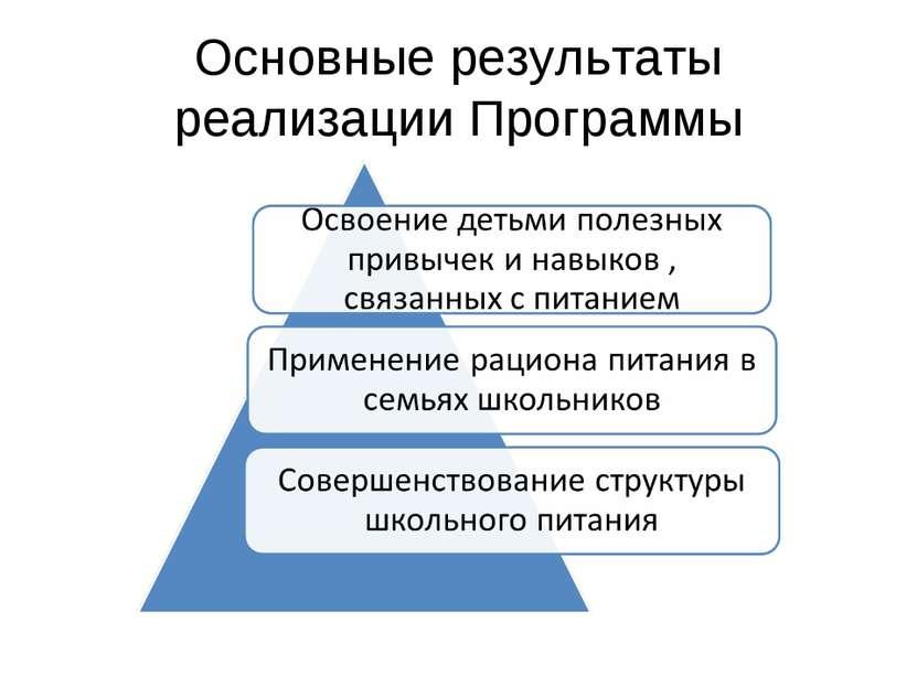 Основные результаты реализации Программы