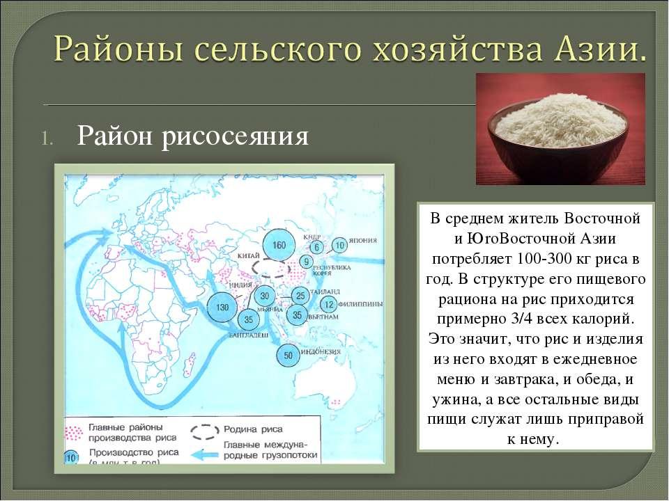 Район рисосеяния В среднем житель Восточной и ЮrоВосточной Азии потребляет 10...