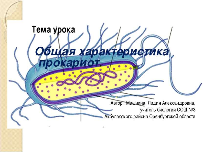 Тема урока Общая характеристика прокариот. Автор: Мишнина Лидия Александровна...