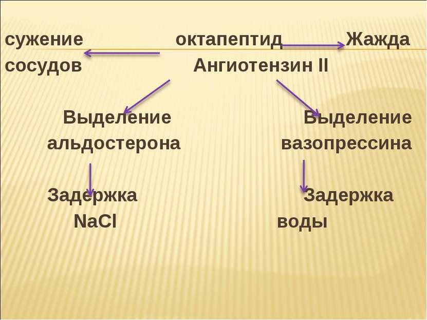 сужение октапептид Жажда сосудов Ангиотензин II Выделение Выделение альдостер...
