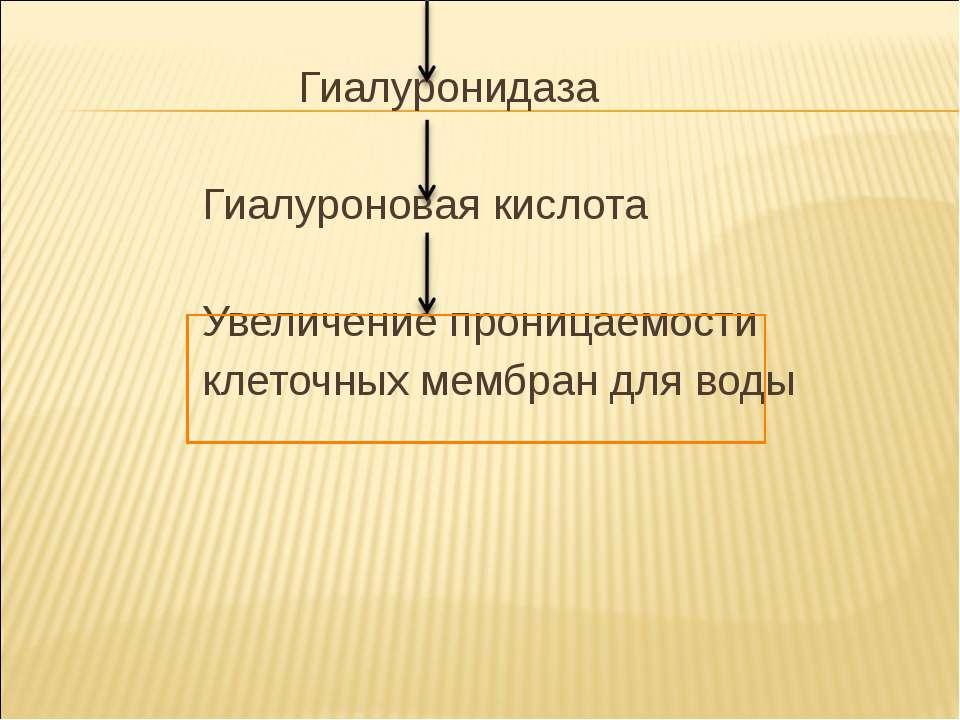 Гиалуронидаза Гиалуроновая кислота Увеличение проницаемости клеточных мембран...