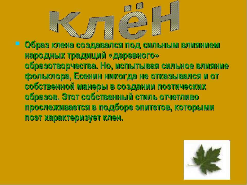 Образ клена создавался под сильным влиянием народных традиций «деревного» обр...