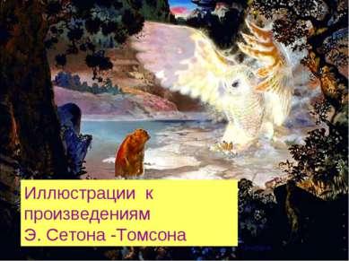 Иллюстрации к произведениям Э. Сетона -Томсона