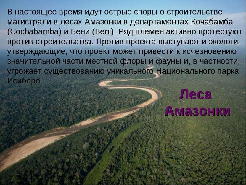 Леса Амазонки В настоящее время идут острые споры о строительстве магистрали ...