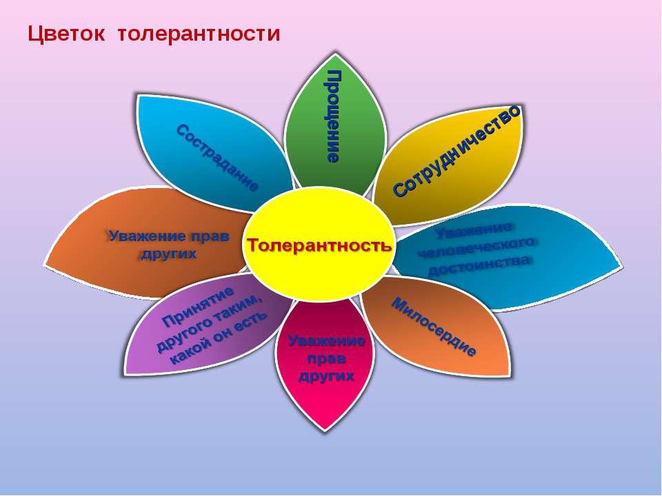 Сотрудничество Прощение Цветок толерантности