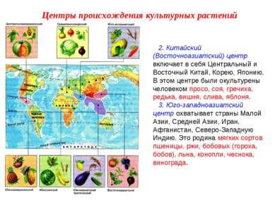 2. Китайский (Восточноазиатский) центр включает в себя Центральный и Восточны...