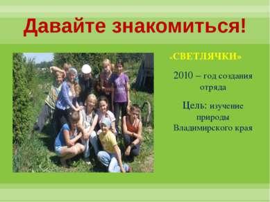 Давайте знакомиться! «СВЕТЛЯЧКИ» 2010 – год создания отряда Цель: изучение пр...