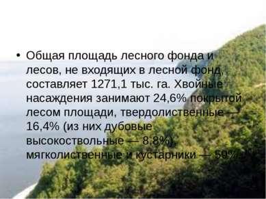 Общая площадь лесного фонда и лесов, не входящих в лесной фонд, составляет 12...