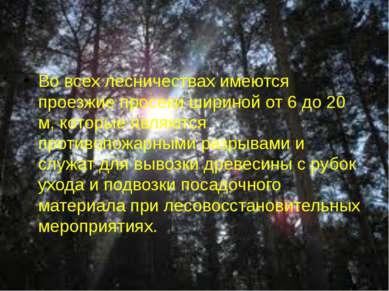 Во всех лесничествах имеются проезжие просеки шириной от 6 до 20 м, которые я...