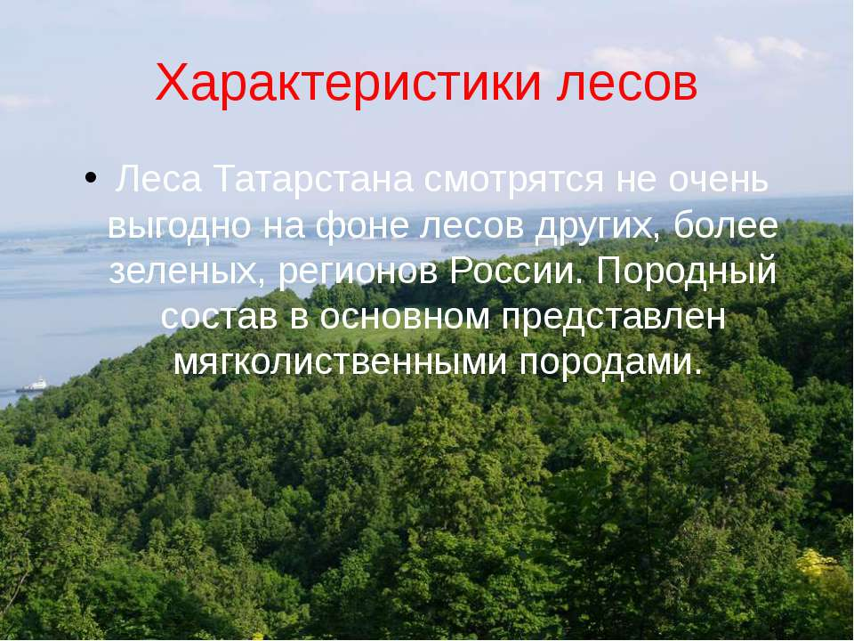 Характеристики лесов Леса Татарстана смотрятся не очень выгодно на фоне лесов...