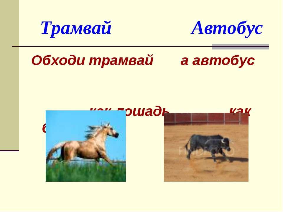 Трамвай Автобус Обходи трамвай а автобус как лошадь, как быка. (спереди) (сзади)