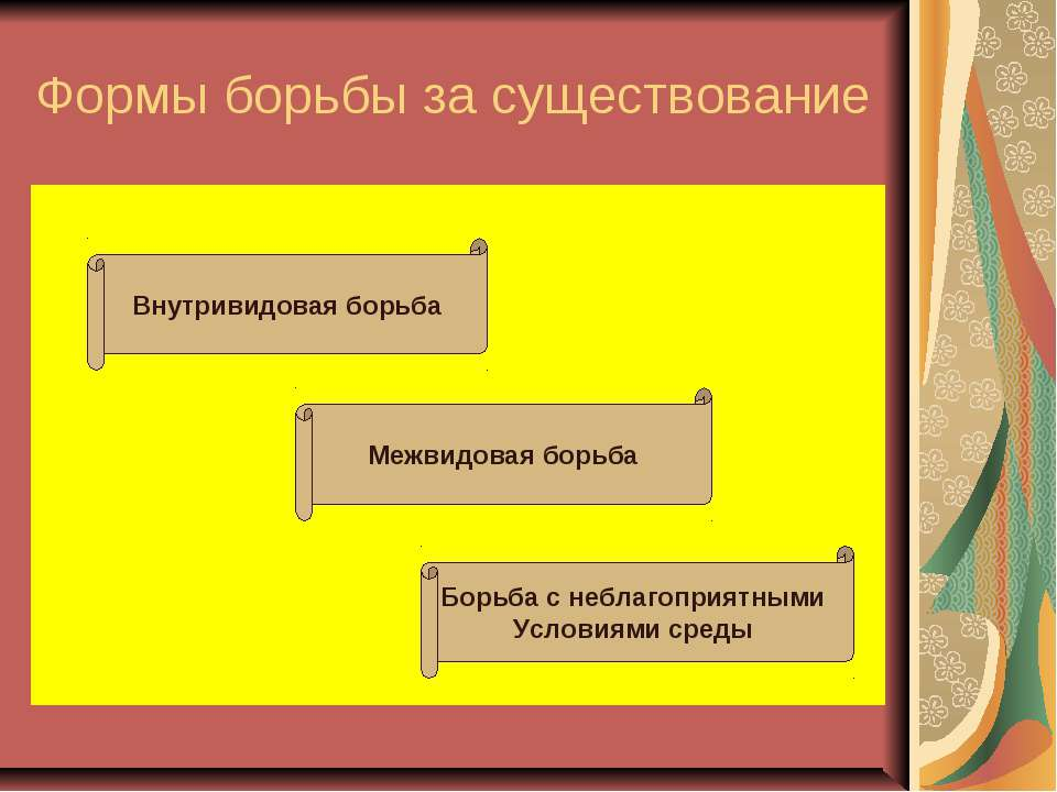 Формы борьбы за существование Внутривидовая борьба Межвидовая борьба Борьба с...