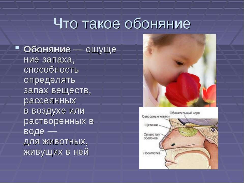 Что такое обоняние Обоняние—ощущениезапаха, способность определять запахв...