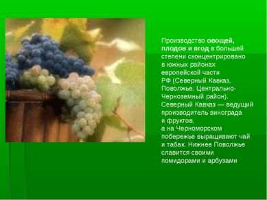 Производство овощей, плодов иягод вбольшей степени сконцентрировано вюжных...