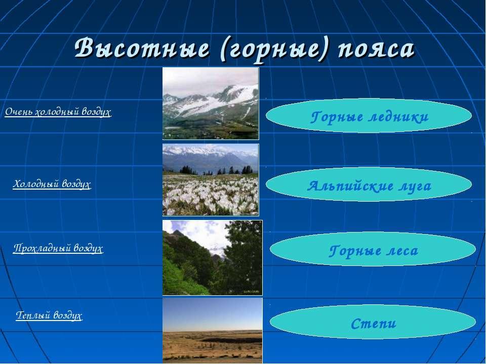 Высотные (горные) пояса Степи Горные леса Альпийские луга Горные ледники Очен...