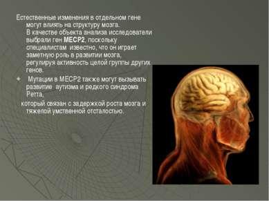 Естественные изменения в отдельном гене могут влиять на структуру мозга. В ка...