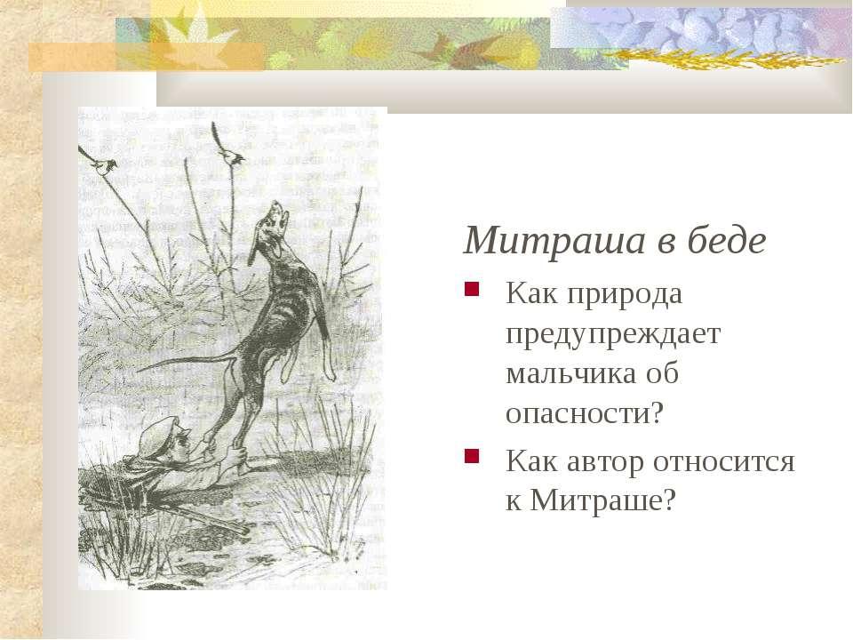 Митраша в беде Как природа предупреждает мальчика об опасности? Как автор отн...