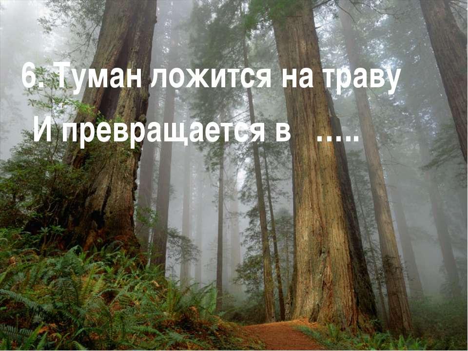 6. Туман ложится на траву И превращается в …..