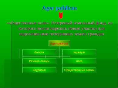 Ager publicus «общественное поле». Резервный земельный фонд, из которого могл...